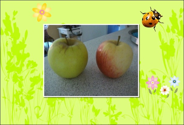 apples_Page_0